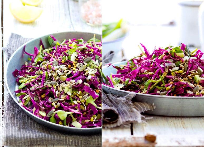 Cabbage_02